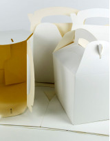 Folding Carton Market by End-user and Geography - Forecast and Analysis 2021-2025