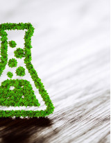 Green Chemicals Market by Product and Geography - Forecast and Analysis 2021-2025