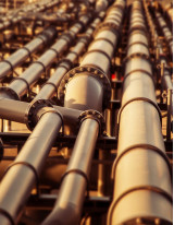 Pipeline Transport Market by Type and Geography - Forecast and Analysis 2021-2025