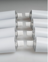Emulsion Adhesives Market by Type and Geography - Forecast and Analysis 2021-2025