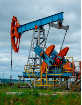 Microbial Enhanced Oil Recovery Market by Application and Geography - Forecast and Analysis 2021-2025
