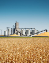 Lignocellulosic Feedstock-based Biofuel Market by Conversion Process and Geography - Forecast and Analysis 2020-2024