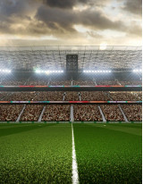 Smart Stadium Market by Software, Deployment, and Geography - Forecast and Analysis 2020-2024