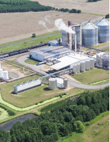 Biomass Power Generation Market by Feedstock and Geography - Forecast and Analysis 2020-2024